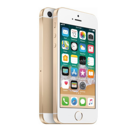 iPhone SE 16 Go - Or